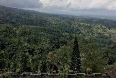 Spektakulärer Ausblick auf das grüne Hochland Balis.